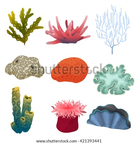 Different kind of cartoon underwater plants and color reef coral icons set. Sea bottom. Underwater reef coral plants concept, Reef coral plants set, Reef coral plants collection, Coral plants ocean - stock vector