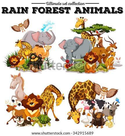 Different kind of rainforest animals illustration - stock vector