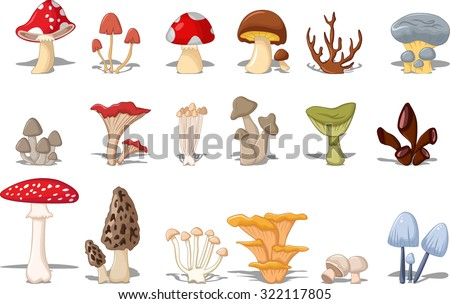 different kinds of mushrooms - stock vector