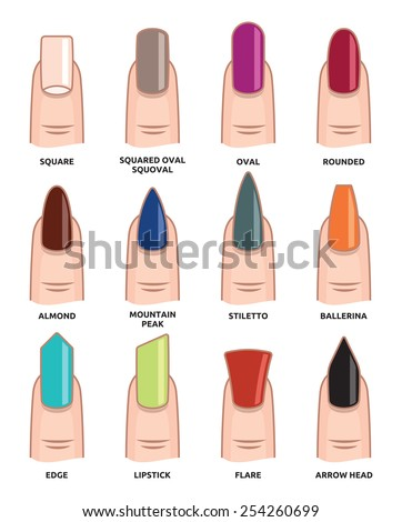 Different nail shapes - Fingernails  fashion Trends - stock vector
