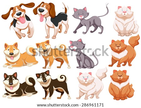 Different pecies of dogs and cats - stock vector
