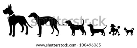 Different Sized Dogs Silhouette Icon Symbol Set EPS 8 vector, grouped for easy editing. No open shapes or paths. - stock vector