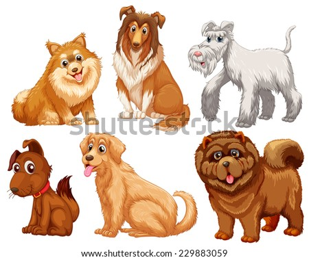 Different species of dogs on a white background  - stock vector