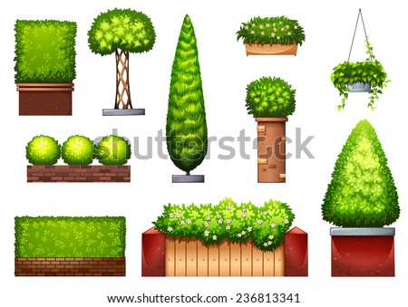 Different styles of decorative plants - stock vector