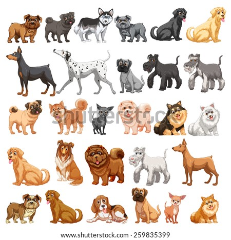 Different type of dogs small and big - stock vector