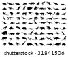 Dinosaur silhouettes isolated on white. Vector illustration. - stock vector