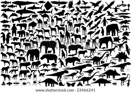 Diverse set of editable vector animal outlines - stock vector