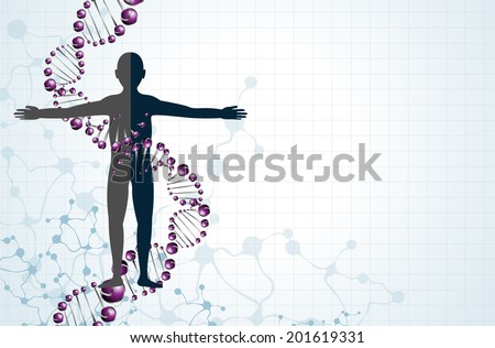 Dna and body vector  - stock vector