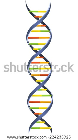 DNA Blood Chromosome Chain Helix Model Science Molecular Spiral structure vector illustration. - stock vector