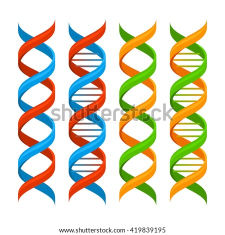 DNA Genome Molecules Set on White Background. Vector illustration - stock vector