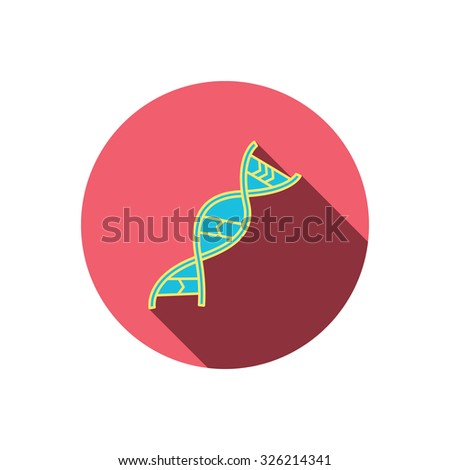 DNA icon. Genetic evolution structure sign. Biology science symbol. Red flat circle button. Linear icon with shadow. Vector - stock vector