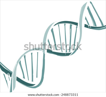 DNA string - stock vector