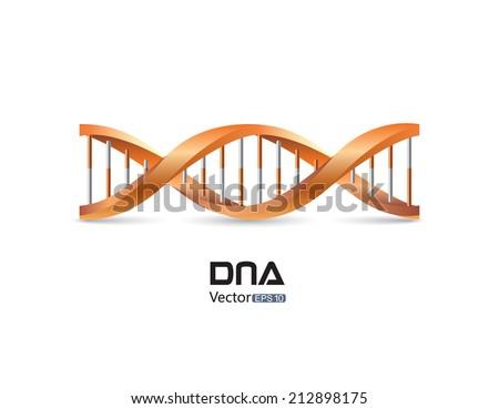DNA symbol - stock vector