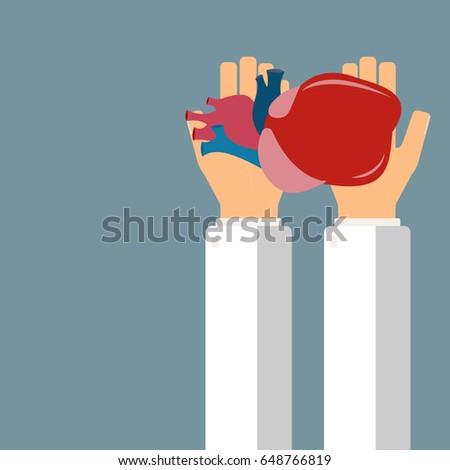 Heart transplant stock images royalty free images vectors doctor hold heart in hands transplantation or treatment heart healthcare concept vector illustration ccuart Choice Image