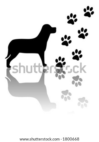 Dog and paws silhouettes - stock vector