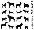 Dog breed vector black silhouette. Dog breed black icons isolated on white background. Dog breed black vector icon illustration. Dog breed black silhouette isolated vector. Dog breed flat silhouette - stock vector