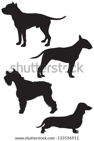 Dog breed vector Silhouettes, Bull Terrier, Schnauzer, Dachshund, Staffordshire Terrier, Stafford, Staffy or Staff, American Pit Bull Terrier - stock vector