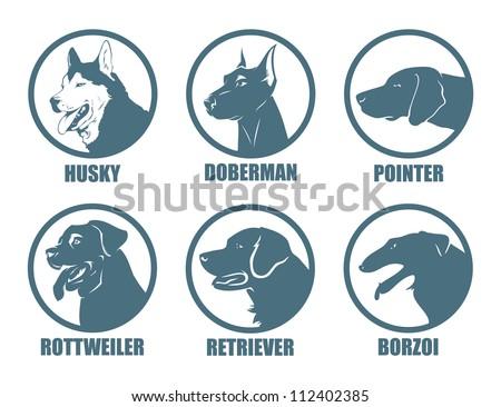 Dog breeds labels - vector illustration - stock vector