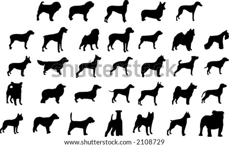 dog breeds silhouettes - stock vector