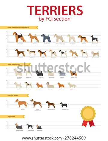 Dog breeds Terriers by FCO section - stock vector
