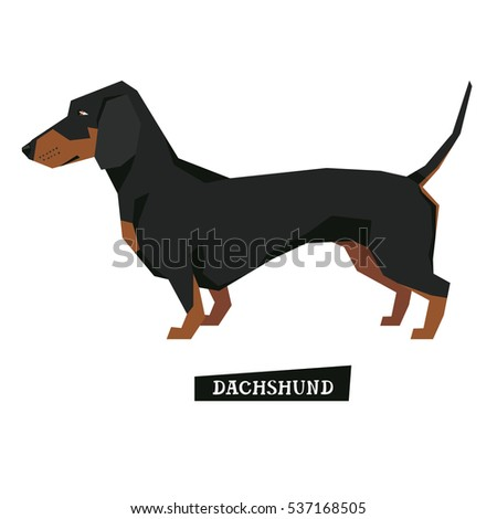 Dog collection Dachshund Geometric style