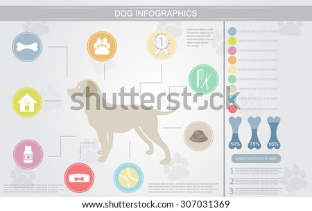 Dog infographics with icons and elements.Vector template. - stock vector