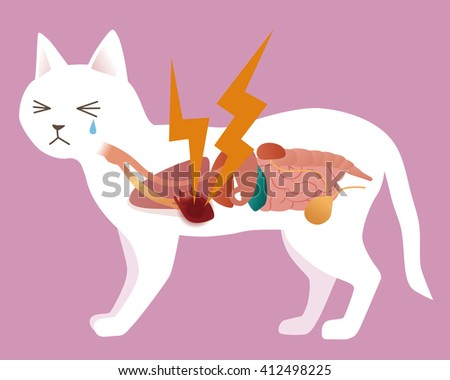 dog's organ and heart disease, vector illustration - stock vector