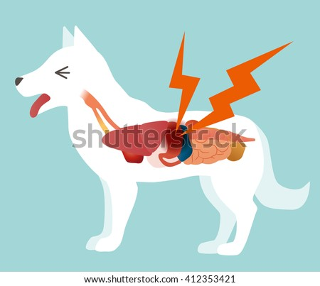 dog's organ and stomachache, vector illustration - stock vector