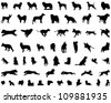 Dog Silhouettes - stock