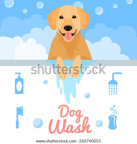 Dog washing in bath in flat style. Vector illustration - stock vector