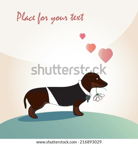 Dog with flower. dachshund as groom or loving person. Can be used as card or invitation. vector - stock vector