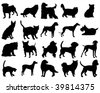 dogs and cats - stock vector