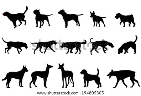 dogs collection silhouettes - stock vector