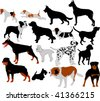 dogs collection vector silhouettes - stock vector