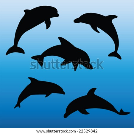 dolphins collection - vector - stock vector