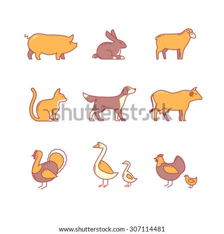 Domestic and farm animals. thin line icons set. Modern flat style symbols isolated on white for infographics or web use. - stock vector