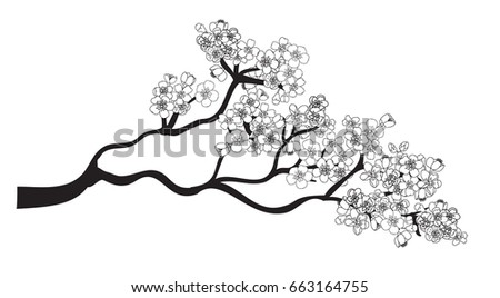 Doodle art Peach blossom plant and Sakura flower vector