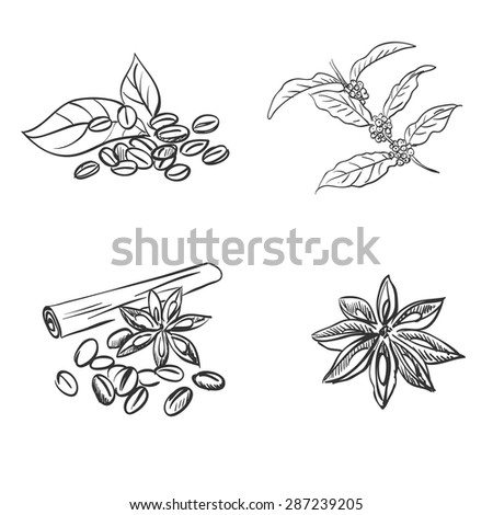 doodle coffee beans, excellent vector illustration, EPS 10 - stock vector