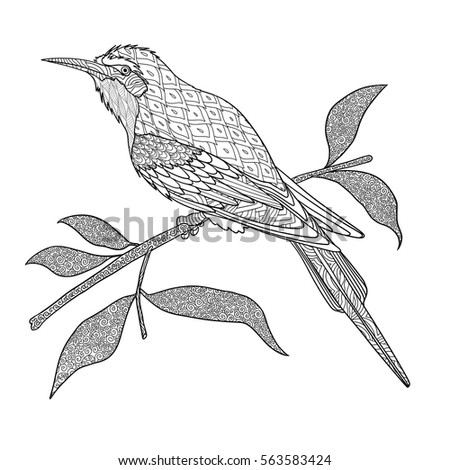 Doodle Coloring Book Adult Bird On Stock Photo (Photo, Vector ...