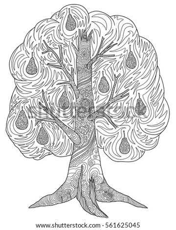 doodle coloring book for adult with tree pear tree with fruits