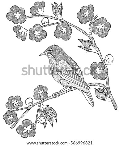 Doodle Coloring Book With A Bird Sitting On Branch Flowers Of Sakura Isolated