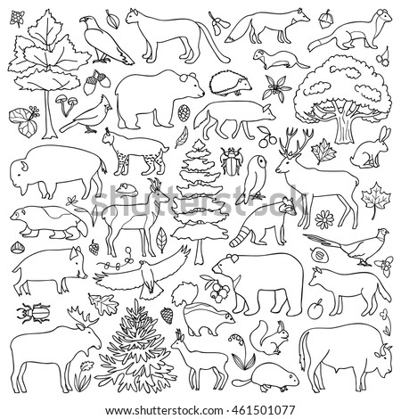 Cliff 20clipart 20plateau furthermore Rainbow Trout Pic To Color 2 Coloring Page With Outline Pictures type Of Apache Trout Coloring Pages Apache Trout Coloring Page additionally Coloring Pages Of Plants And Animals besides Cute Cats Pattern 1706107 further I0000s iQ4NMAZqQ. on grand canyon drawing