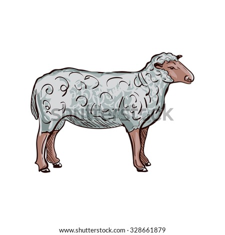 Doodle Sketchy Sheep. Vector Illustration. Isolated in white background. - stock vector