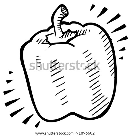 Doodle style fresh, juicy bell pepper illustration in vector format - stock vector