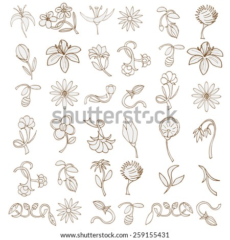 Doodles Flowers collection. Vector illustration, Isolated on white - stock vector