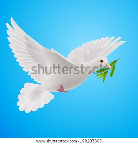Dove of peace flying with a green twig after flood  in sky