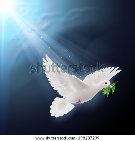 Dove of peace flying with a green twig after flood on dark background - stock vector