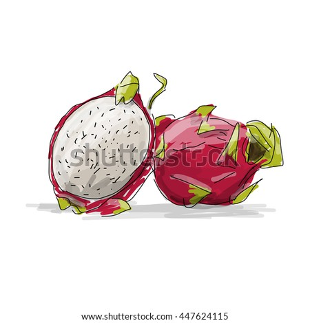 Dragon Fruit, pitahaya sketch for your design - stock vector