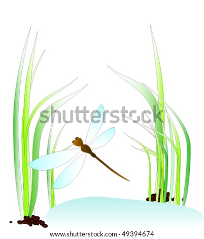 Dragonfly above the moss - stock vector