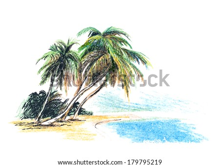 Palm Tree on The Beach Drawing Drawing Beach With Palm Trees